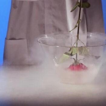 , Шоу опытов — морозная наука
