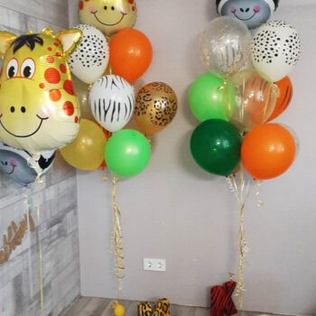 , Воздушные шары
